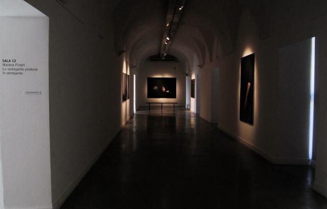 Malena Pizani - Vista de instalación 1