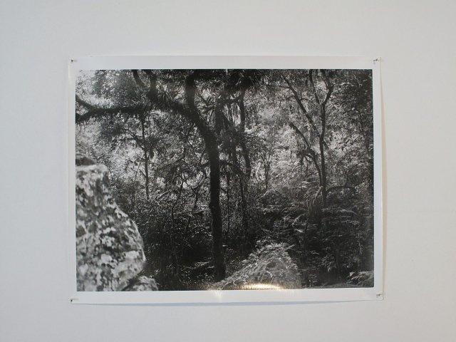 Dubner-Goldenstein-Szalkowicz_Vista de instalación_Alberto Goldenstein_27