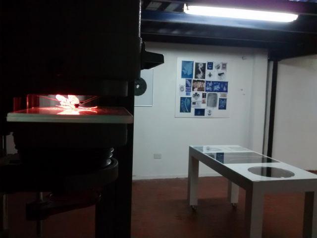 Micrografía o el espejo de la naturaleza-Pablo Lapadula-14