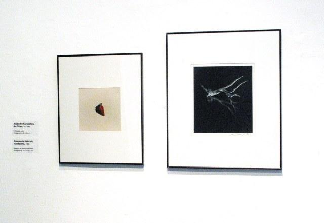 Dest_El método y el objeto_Alejandro Kuropatwa-Annemarie Heinrich_14