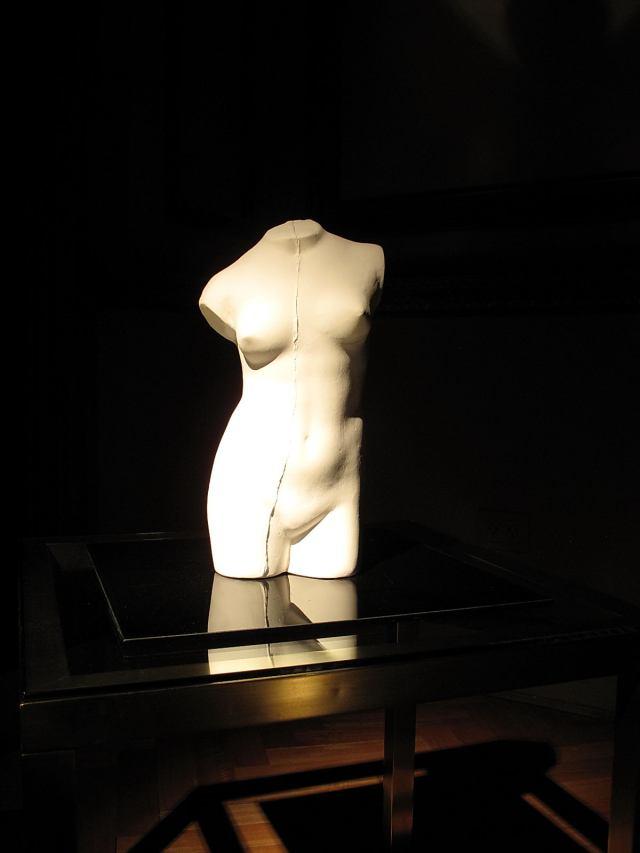 La estatua casera-Verónica Romano-11