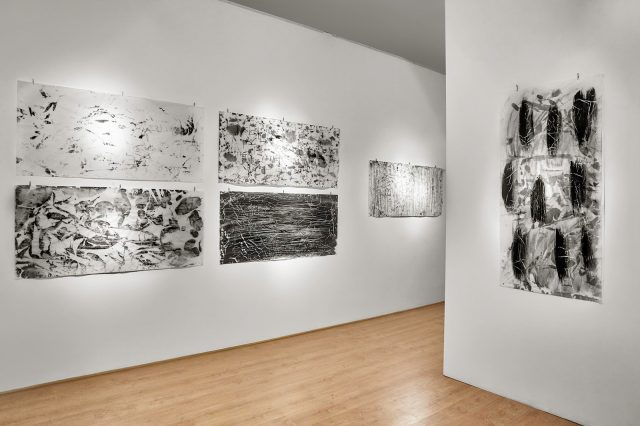 Apuntes de superficie-Diana Dreyfus-06